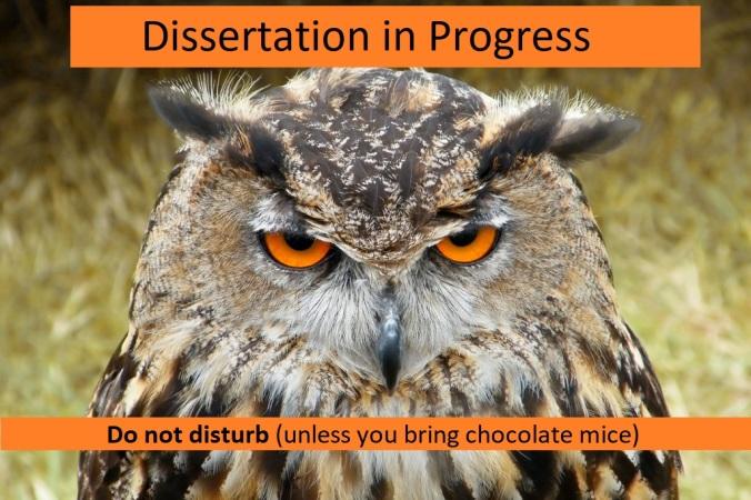 grumpy phd owl